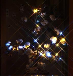 クリスマスツリー光